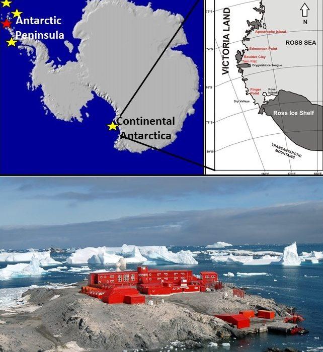 L'Insubria apre una sede in Antartide